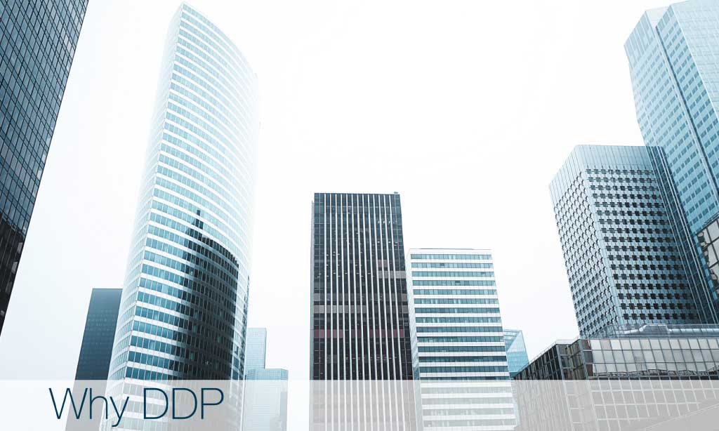 Why DDP valuation experts